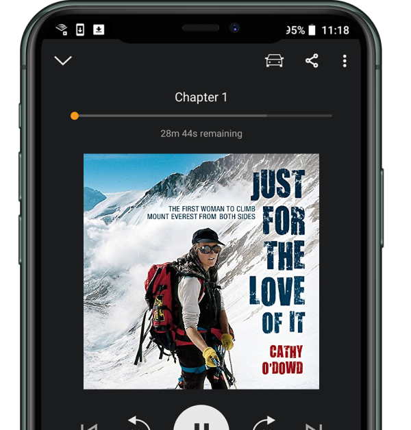 Just For The Love Of It on Audible